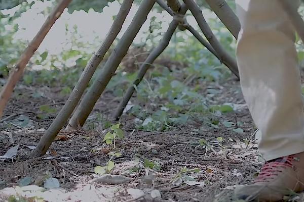 木でシェルターを作る
