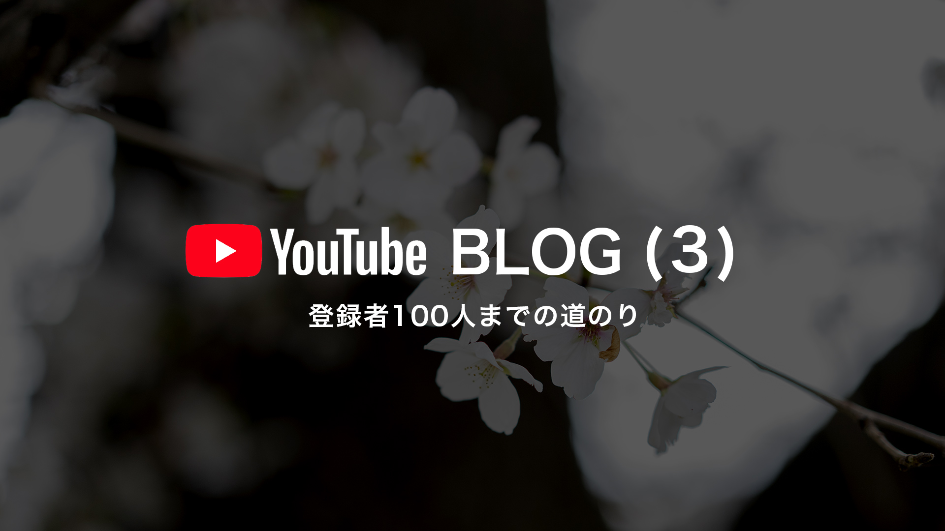 他のYouTube動画投稿者との差別化
