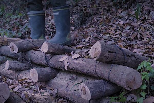 丸太土留工の経過